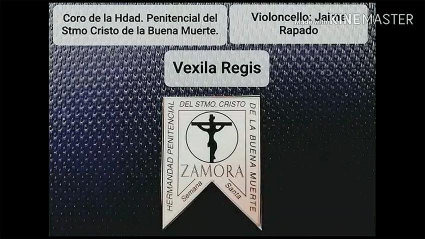Vexila Regis. Hermandad Penitencial del Santísimo Cristo de la Buena Muerte